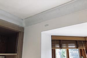 Fitting coving in Kingston, Kent